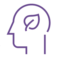 sustainable-strategies-icon