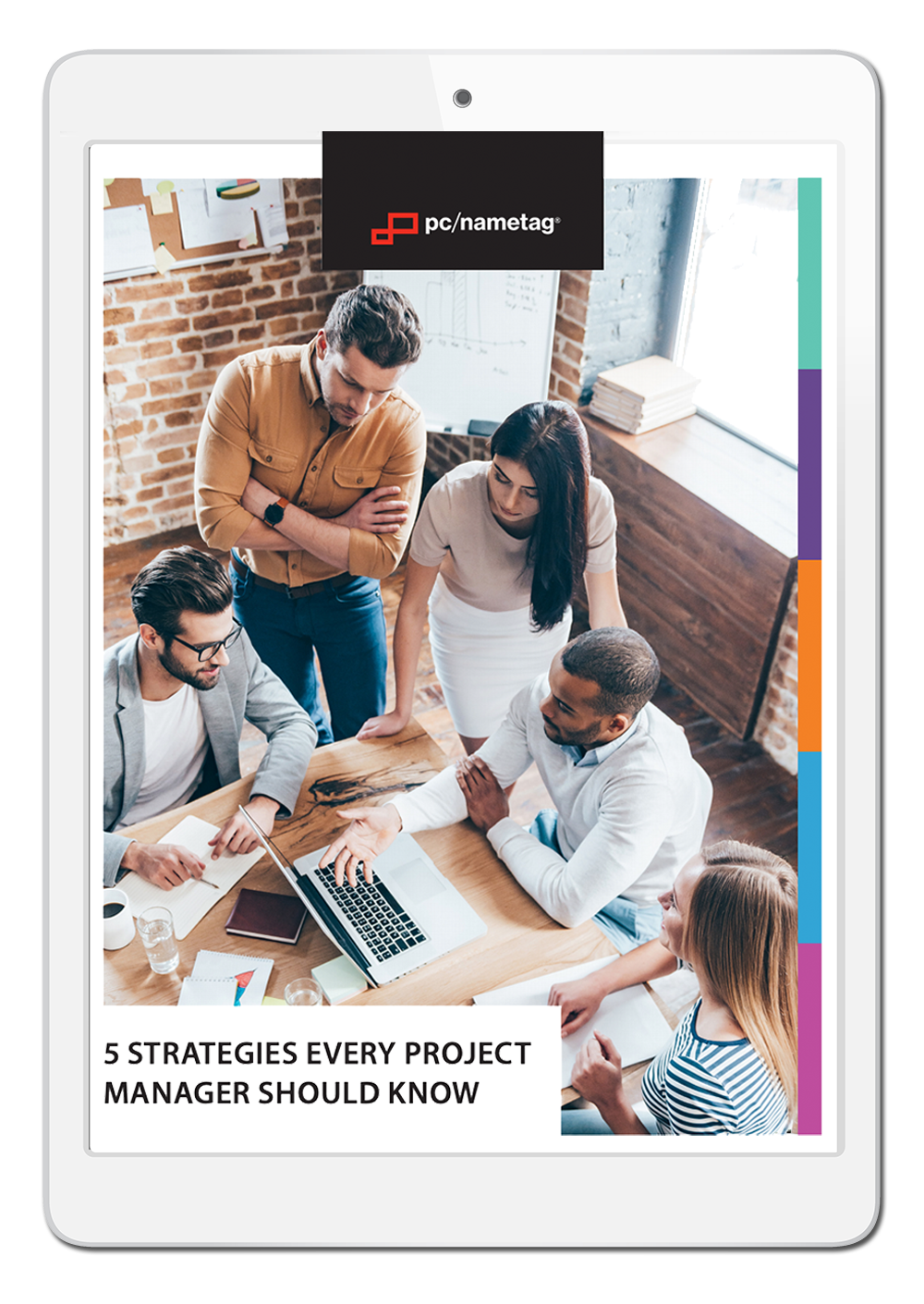 Project Management Ebook in iPad
